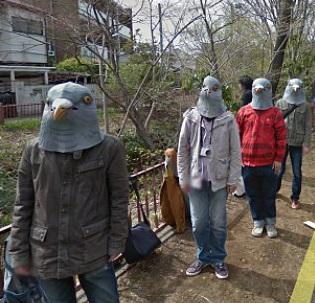 Les pros sont des pigeons