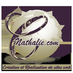 création site internet antibes nice cannes monaco france