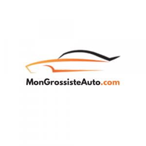 Logo Mongrossisteauto.com