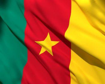 Visa Cameroun