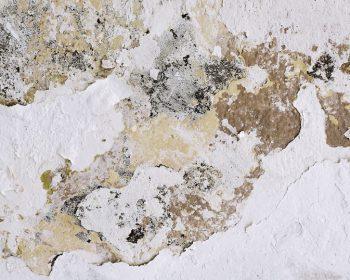traitement humidité mur Vivrosec