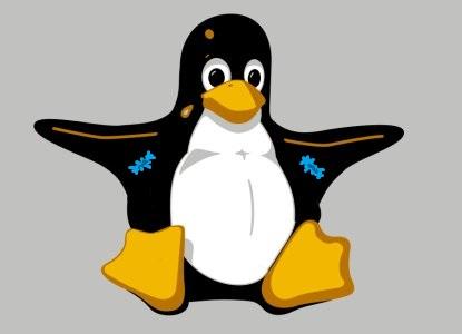 la pinguine suis la mode