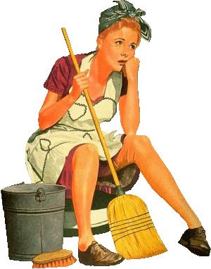 Pas envie de faire le nettoyage de mon blog